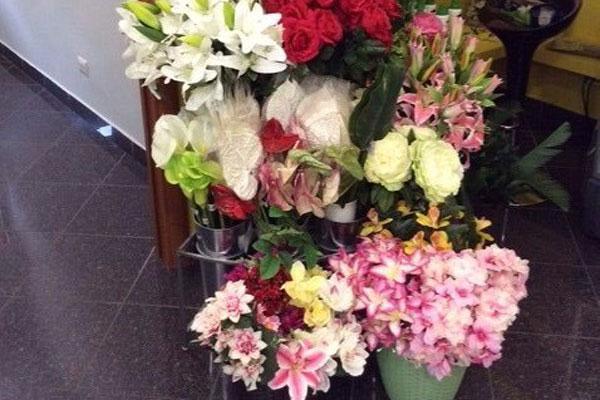 fiori-02